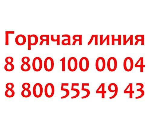 Горячая линия Роспотребнадзора: номера телефонов, принимающих звонки круглосуточно, где найти адреса, электронную почту и другие контакты подразделений в интернете?