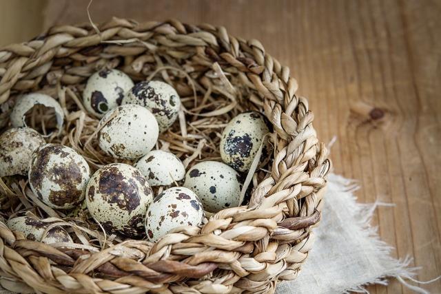 cрок годности яиц: сколько хранятся куриные, перепелиные домашние яйца, как можно беречь сырые, вареные при комнатной температуре?