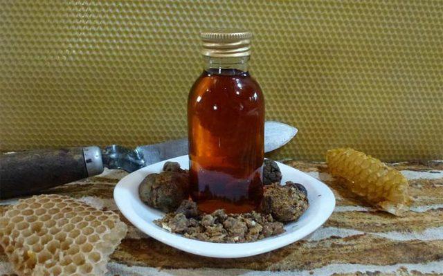 Срок годности прополиса: есть ли он у натурального продукта, какой период времени для пчелиного клея в сухом и твердом виде, настойки на спирту, и условия хранения